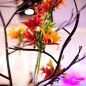Tulip - Blooming Creations - Corporate Event Design - Corporate Floral Design